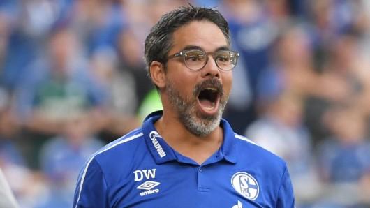 Coach David Wagner steht mit Schalke vor wegweisenden Spielen.