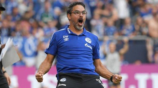 Dank David Wagner darf der FC Schalke 04 wieder jubeln.