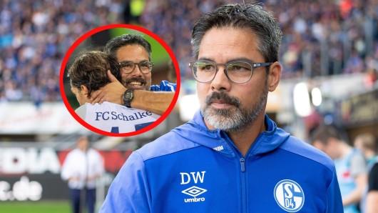 David Wagner hat mit dem FC Schalke 04 zuletzt zwei Siege hintereinander eingefahren.