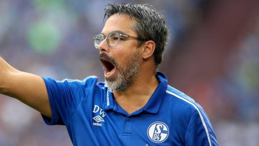 Schalke - Mainz im Live-Ticker: Hier gibt's alle Infos!