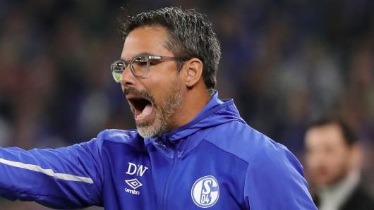 Beim FC Schalke 04 hat David Wagner die Leistung in der zweiten Halbzeit gegen Mainz kritisiert.