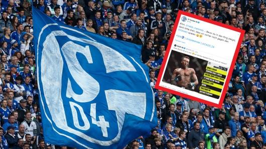 Die Fans des FC Schalke 04 lachten über einen Tweet der Königsblauen.