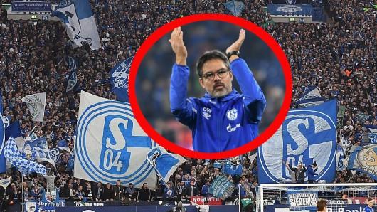 Beim Spiel des FC Schalke 04 gegend en 1. FC Köln begannen die Ultras Gelsenkirchen mit einer alljährlichen Aktion.