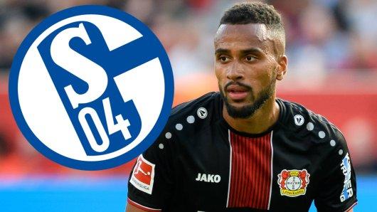 Der FC Schalke 04 war offenbar an Isaac Thelin interessiert.
