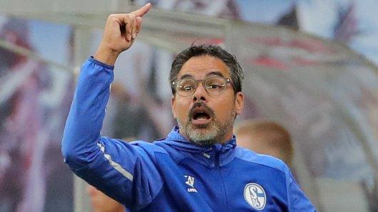 David Wagner ist mit dem FC Schalke 04 am Sonntag in Hoffenheim zu Gast.