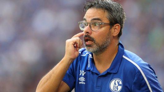 Kann David Wagner mit dem FC Schalke 04 am Sonntagabend in Hoffenheim gewinnen?