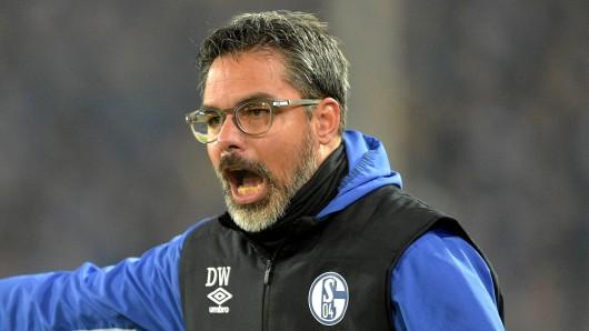 Augsburg - Schalke im Live-Ticker: Hier gibt's alle Infos zum Spiel!