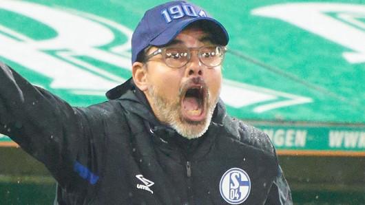 David Wagner fand mit dem FC Schalke 04 am vergangenen Spieltag beim 3:2 in Augsburg zurück in die Erfolgsspur.