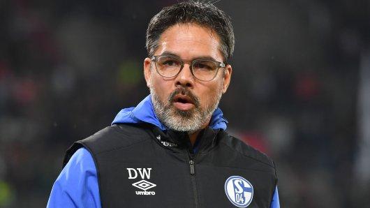 David Wagner gehen beim FC Schalke 04 derzeit die Innenverteidiger aus.