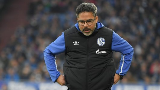 David Wagner, Trainer des FC Schalke 04, muss einen weiteren Ausfall verkraften.