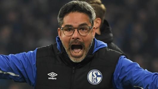 David Wagner und der FC Schalke 04 haben in dieser Saison noch viel vor.