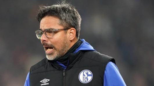 David Wagner und der FC Schalke 04 sind am Samstag beim SV Werder Bremen zu Gast.