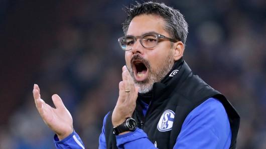 David Wagner ist am Samstagabend mit dem FC Schalke 04 bei Bayer Leverkusen zu Gast.