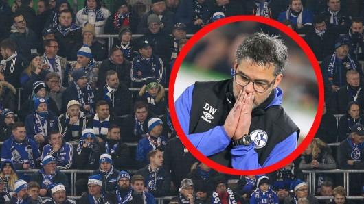 Der FC Schalke 04 trauert um einen verstorbenen Fan.