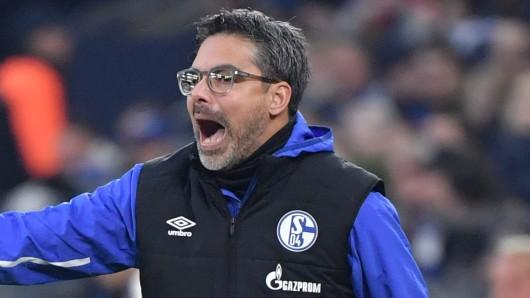 Nach dem 4:0 des FC Schalke 04 beim Hamburger SV schwebte David Wagner auf Wolke sieben.