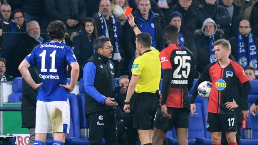 Schalke-Trainer David Wagner sieht die Rote Karte.