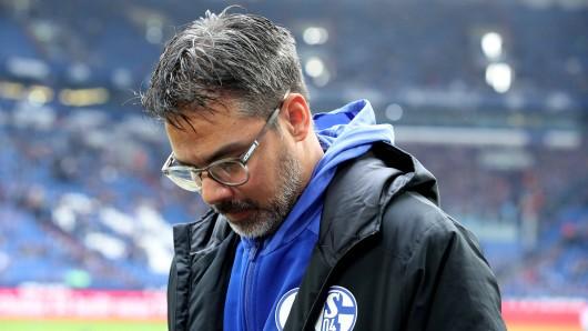 David Wagner und der FC Schalke 04 hatten sich gegen den SC Paderborn mehr ausgemalt.