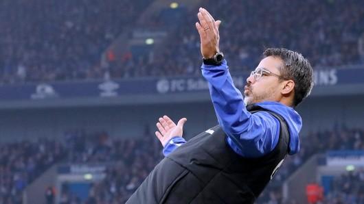 David Wagner muss ein großes Schalker Problem in den Griff bekommen.