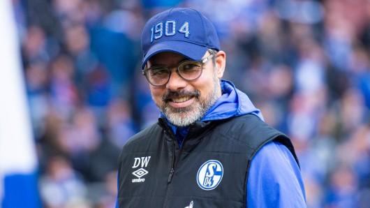 Gegen einen Platz in der Champions League würde David Wagner sich mit dem FC Schalke 04 wohl nicht wehren.