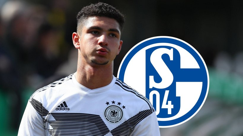 Fc Schalke Transfers