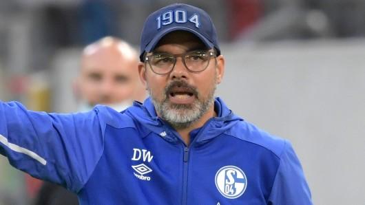 David Wagner will Schalke schleunigst zurück in die Erfolgsspur bringen.
