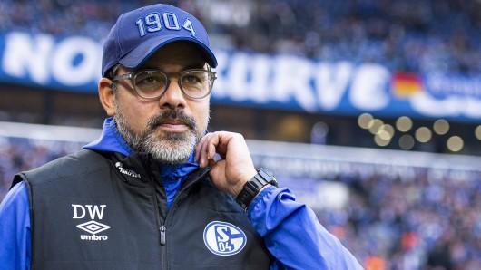 David Wagner und der FC Schalke 04 empfangen am Sonntag Bayer Leverkusen.