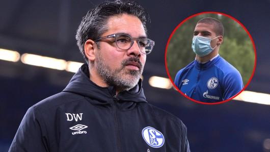 David Wagner gab beim FC Schalke 04 eine Lobeshymne auf Can Bozdogan zum Besten.