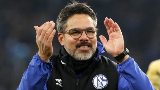 David Wagner kann beim FC Schalke 04 endlich wieder auf den einen oder anderen Spieler zurückgreifen, der zuletzt angeschlagen war.