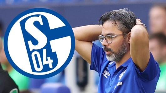 David Wagner erlebt auf Schalke eine Rückrunde zum Vergessen.