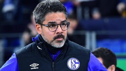 David Wagner will mit dem FC Schalke 04 am Samstagnachmittag in Freiburg endlich mal wieder gewinnen.