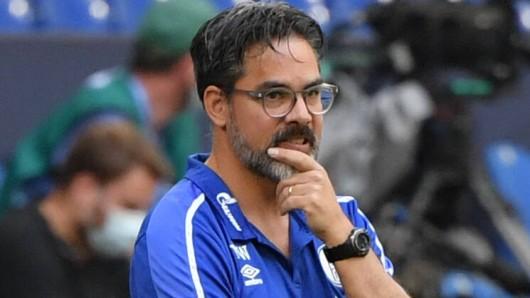 Bleibt David Wagner Trainer des FC Schalke 04?