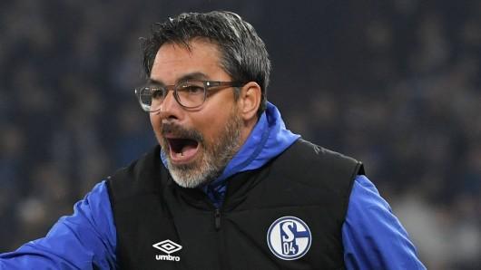 David Wagner steht beim FC Schalke 04 vor großen Herausforderungen.