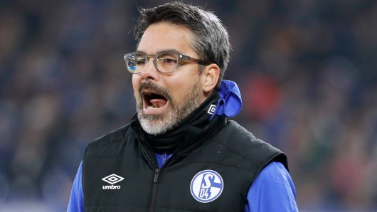 David Wagner will mit dem FC Schalke 04 in der kommenden Saison zurück in die Erfolgsspur finden.