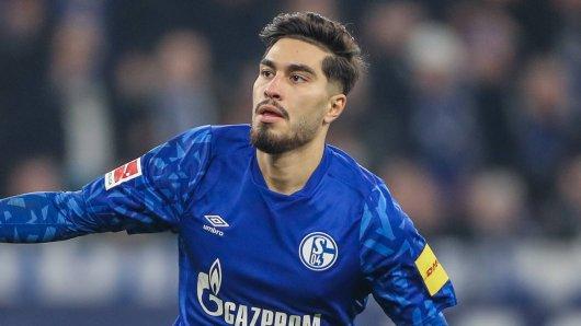 So wollen die Fans des FC Schalke 04 Suat Serdar in Zukunft wieder sehen: Jubelnd.