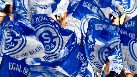 Die Fans des FC Schalke 04 können endlich mal wieder jubeln.