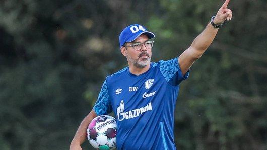 David Wagner hat mit dem FC Schalke 04 einiges vor.