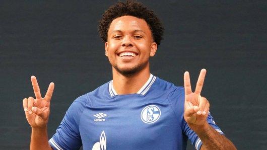 FC Schalke 04: Geht es jetzt ganz schnell bei Weston McKennie?