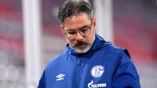 FC Schalke 04: Trainer David Wagner steht stark in der Kritik.