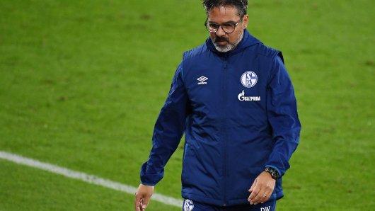 FC Schalke 04: Trainer David Wagner war nach der Niederlage gegen Werder Bremen sichtlich bedient.