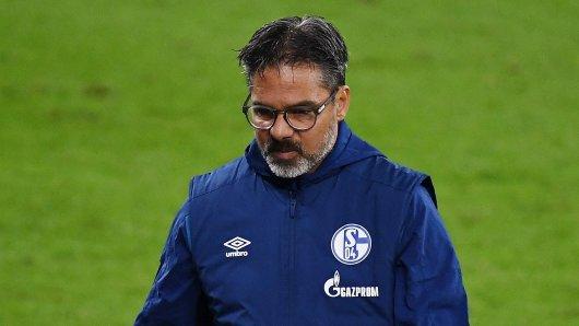 Der FC Schalke 04 hat David Wagner beurlaubt.