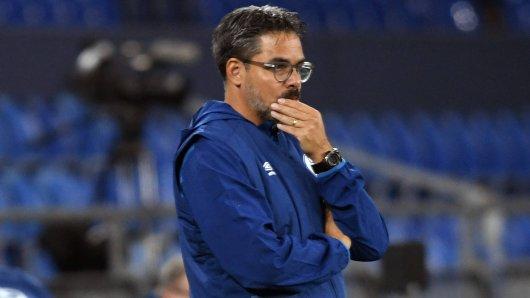 FC Schalke 04: Wieso gefällt IHM die Wagner-Entlassung?