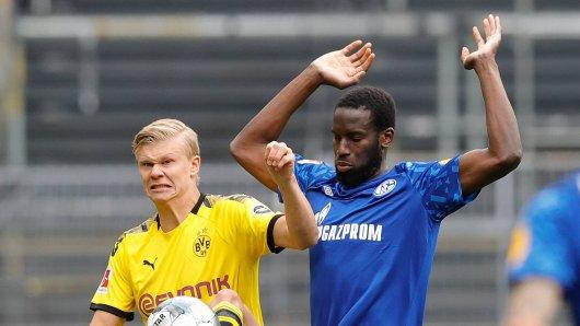 FC Schalke 04: Kann der S04 gegen den BVB etwas holen?