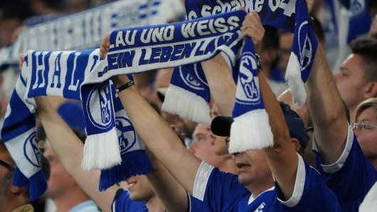 Ein Schalke-Fan begeistert auf Twitter mit einer starken Aktion.