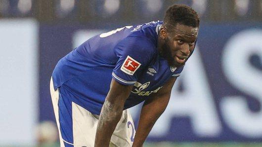 FC Schalke 04: Jetzt könnte es richtig bitter für Salif Sané werden.