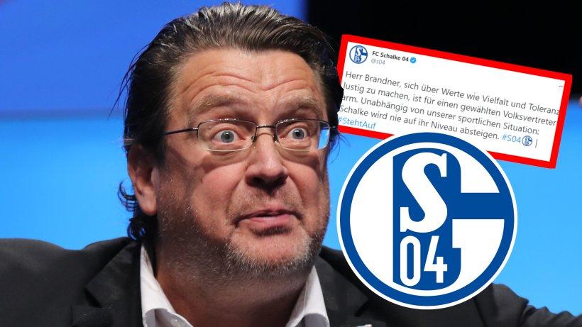 FC Schalke 04: AfD-Mann macht sich über S04 lustig - und kriegt eine Antwort, die sich gewaschen hat