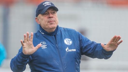 Beim FC Schalke 04 sorgt eine Einschätzung von Christian Gross für Diskussionen bei den Fans.