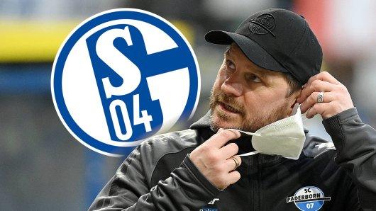 FC Schalke 04: Kommt Steffen Baumgart als Trainer?