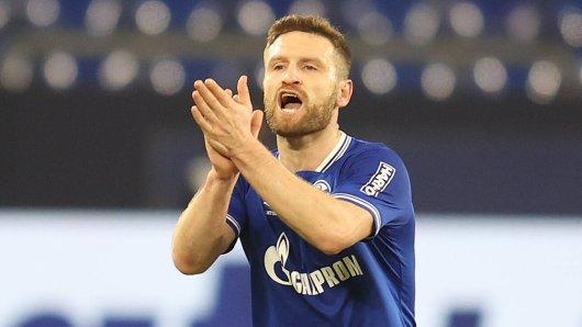 FC Schalke 04: Nach seinem Wechsel zum Bundesliga-Schlusslicht erhielt Mustafi Glückwünsche von höchster Stelle.