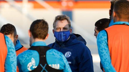 Beim FC Schalke 04 schlug Mike Büskens das Angebot für den Cheftrainer-Posten aus.