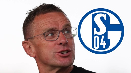 Die Fans des FC Schalke 04 fordern eine Rückkehr von Ralf Rangnick.